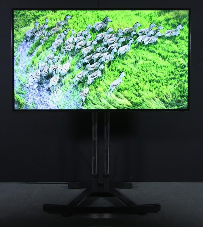 "Samsung 65"" LED"