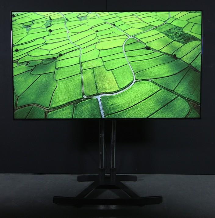 "Samsung 75"" LED"